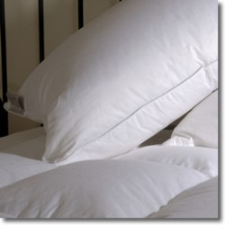 Pillow - 90% Goose Down in standard & larger sizes