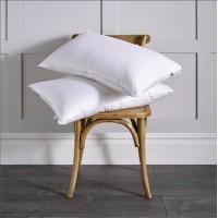 Firm Pillows (6)