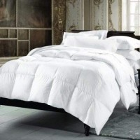 Small Double Duvets (18)