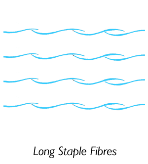 300 Thread Count Long Staple Fibres